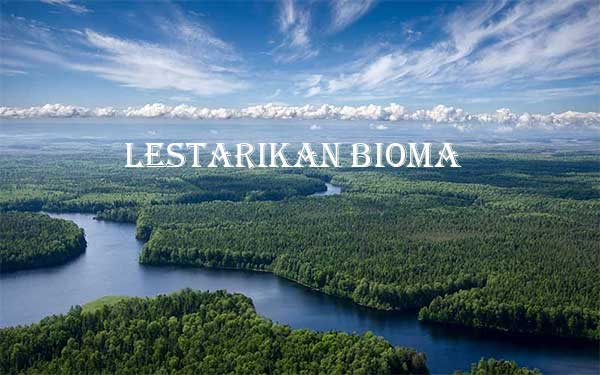 Konservasi dan Pelestarian Bioma