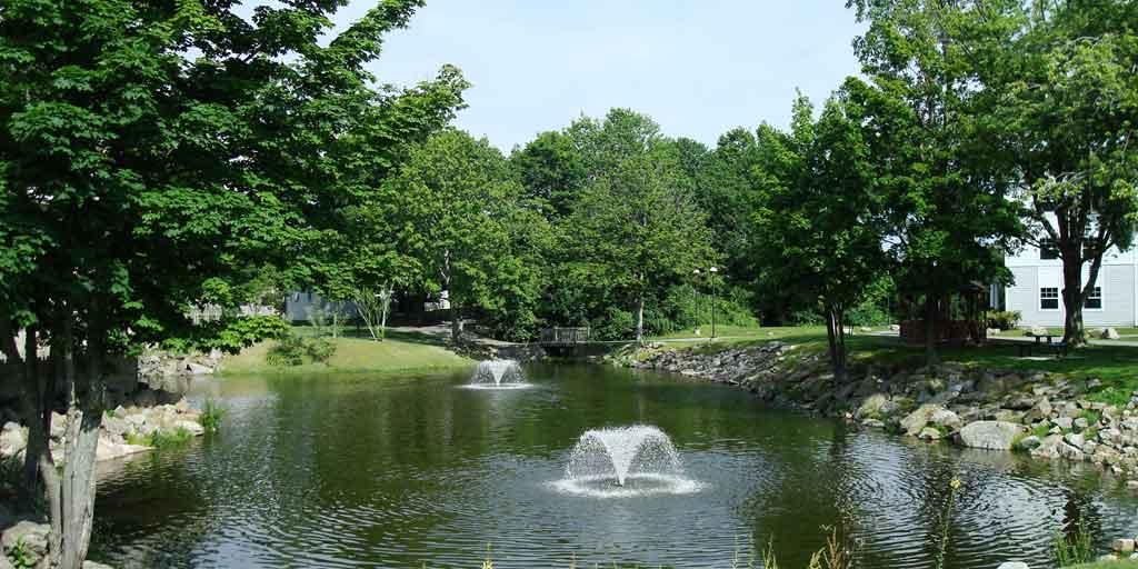 Pond in Subdivision