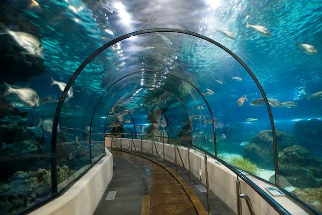 Aquarium de Barcelona, Barcelona