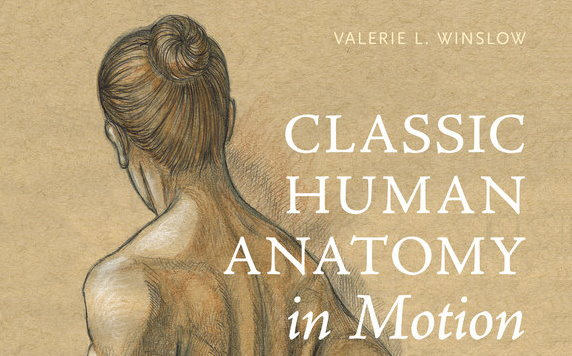 Classic Human Anatomy In Motion By Valerie L Winslow Review The