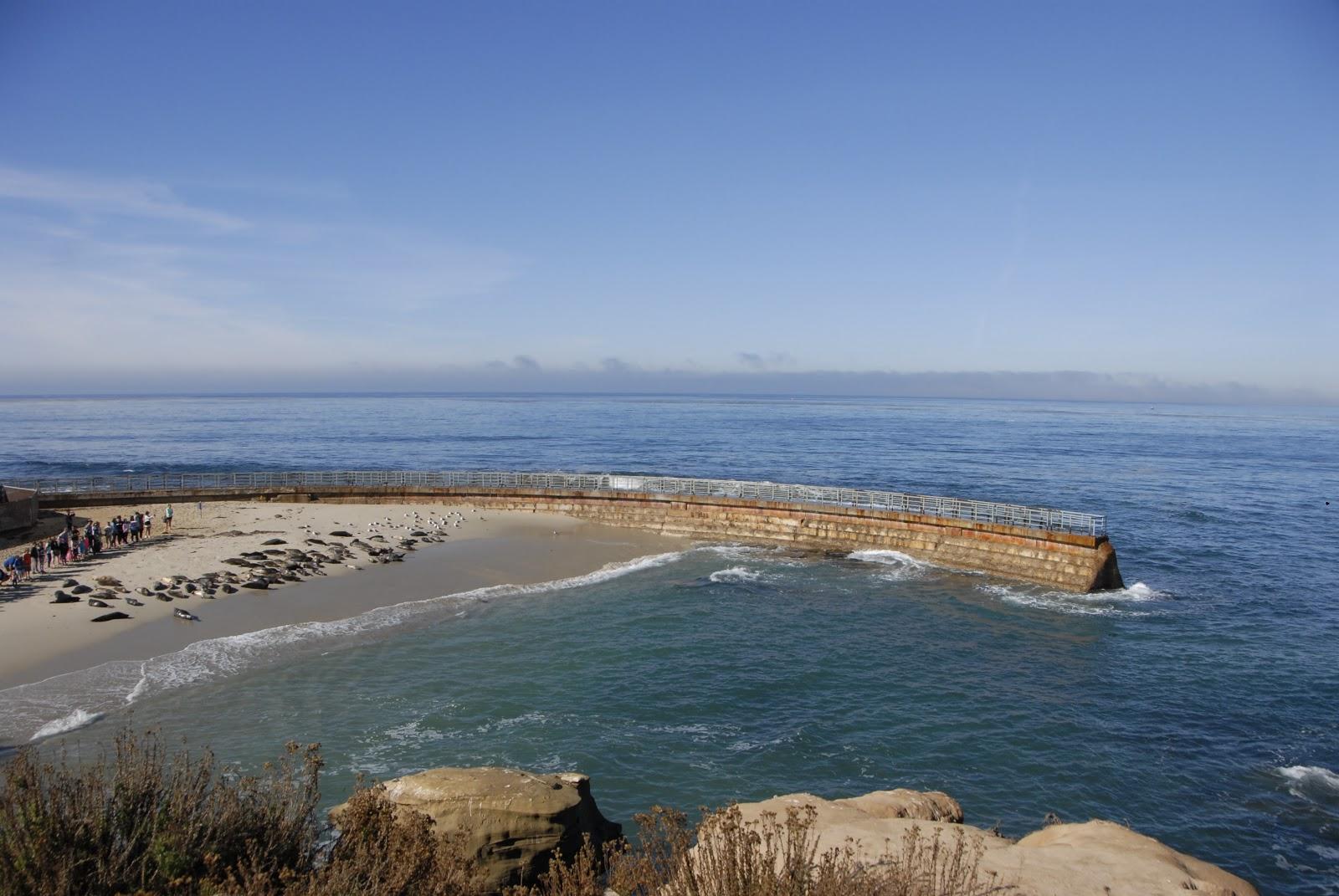 Seal Beach: LadyD Books