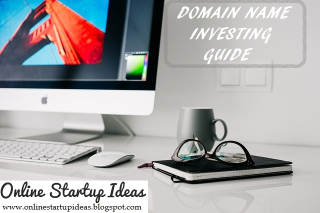 Domain Name Investing Guide