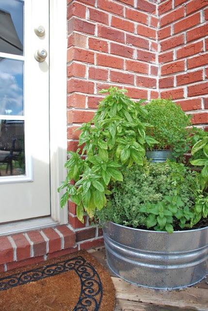 pictures of vintage herb gardens | { the vintage wren }: :: back door herb garden
