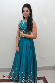 Sree Mukhi Pictures at Gentleman Audio Launch  0114