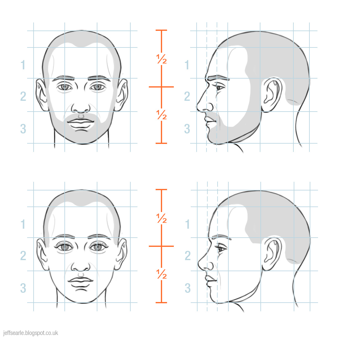Jeff Searle Proportions Of The Human Head
