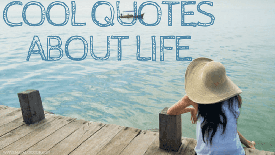 Cool Quotes About Life ? Here comes the Sweetest of it all you have been waiting for.