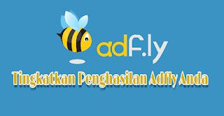 Trik Jitu Mengoptimalkan Penghasilan Dari Adfly