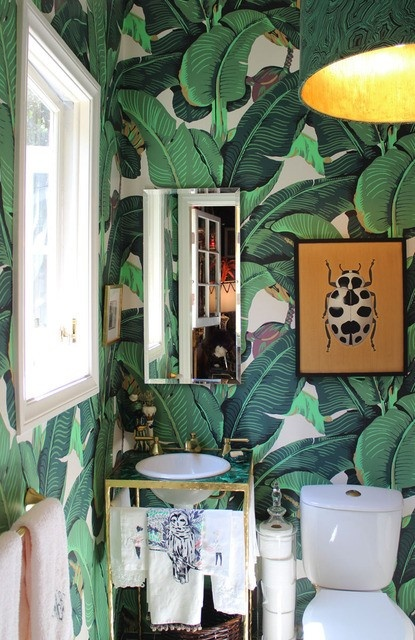 Fantastic Marvelous Martinique Banana Leaf Wallpaper vs. the Thrill of  NV56