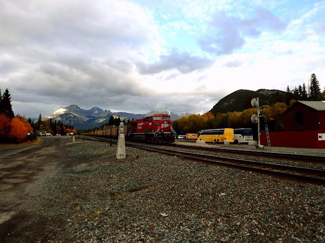banff tren