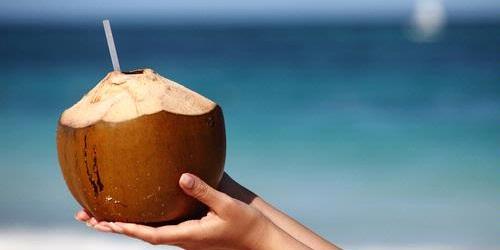 berbagai manfaat air kelapa