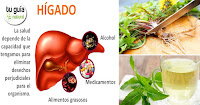 https://steviaven.blogspot.com/2018/04/hierbas-medicinales-proteger-higado.html