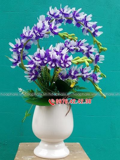 Hoa da pha le tai Long Bien
