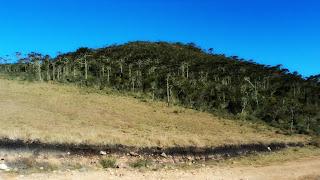Pico Monte Negro, São José dos Ausentes - Ponto Mais Alto do Estado do Rio Grande do Sul