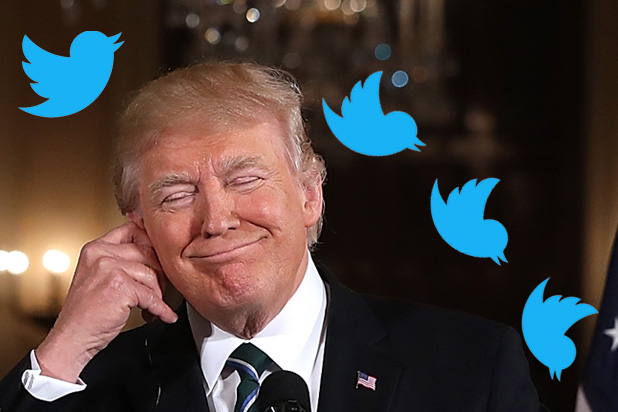 'The Daily Show' to Open The Donald J Trump Presidential Twitter Library – For Real