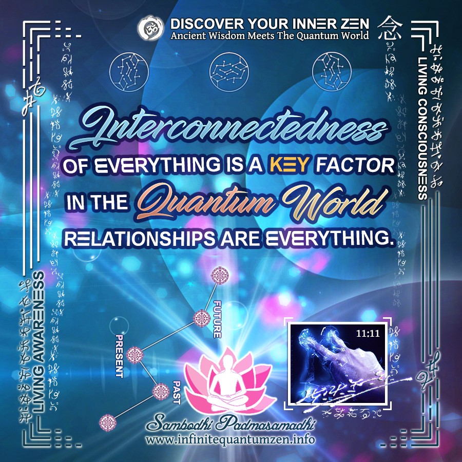 Interconnectedness of Everything is a Key Factor in the Quantum World - Relationships are Everything - Infinite Quantum Zen, Success Life Quotes