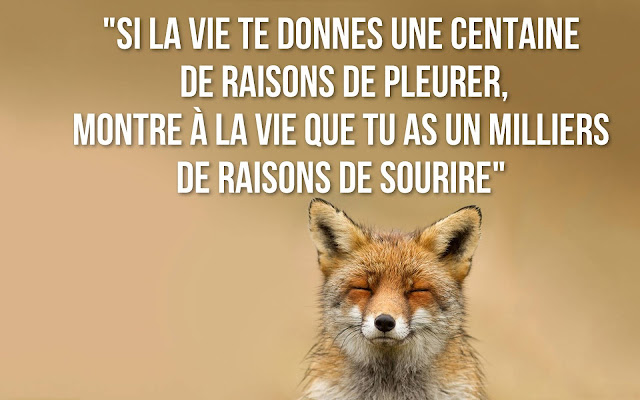 citation sourire