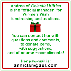 About Winnie's Wish Fund Raising