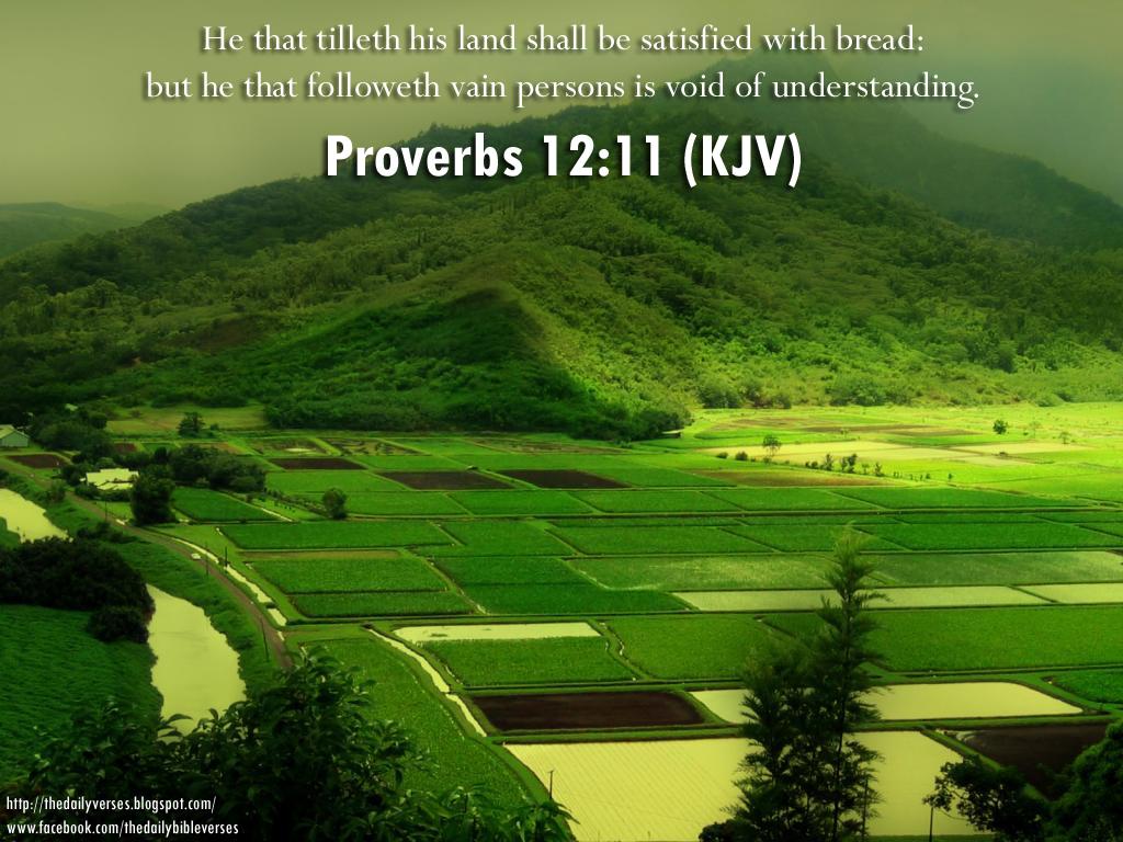 Daily Bible Verses: Proverbs 12:11