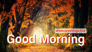 Natural good morning greetings latest