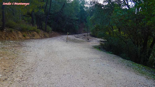 Cerrada de Elías, río Borosa, Pontones, Sierra de Cazorla, Jaén, Andalucía