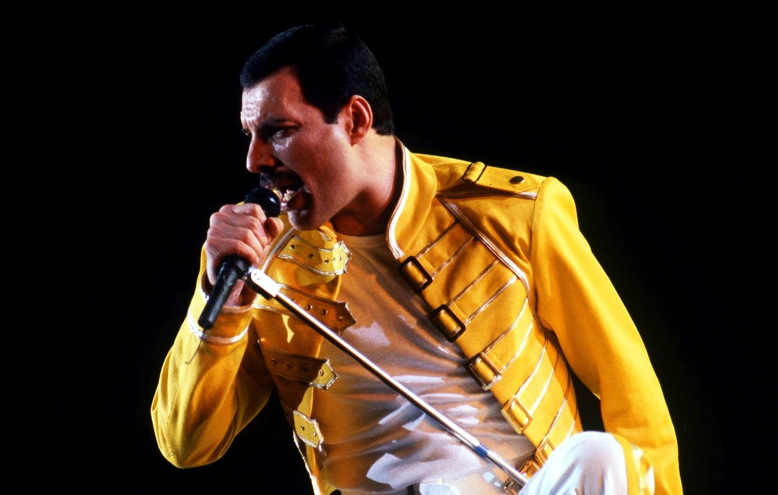 Freddie Mercury Died 25 Years Ago Today: 23 Amazing Facts ...