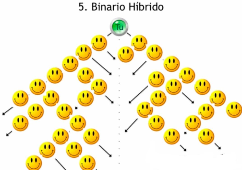 www fidati com binario hibrido carro