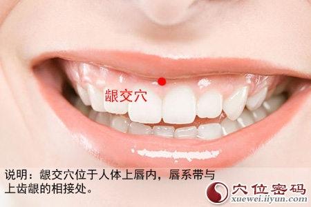齦交穴位 | 齦交穴痛位置 - 穴道按摩經絡圖解 | Source:xueweitu.iiyun.com