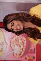 Shilpa Shetty super cute fit in Yellow T Shirt 18.JPG