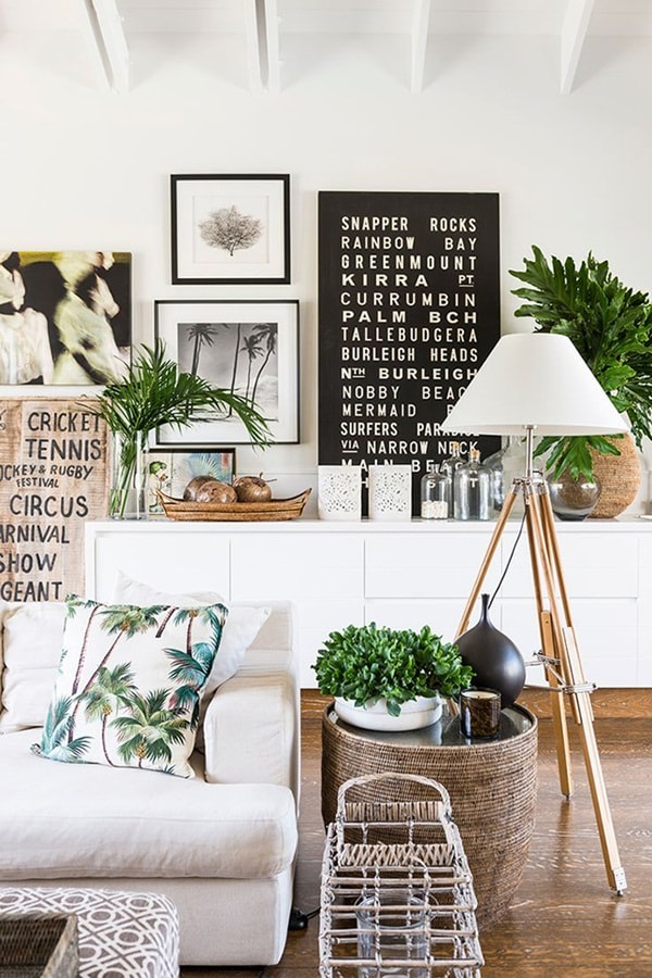 The Best Plants To Decorate Interiors 1
