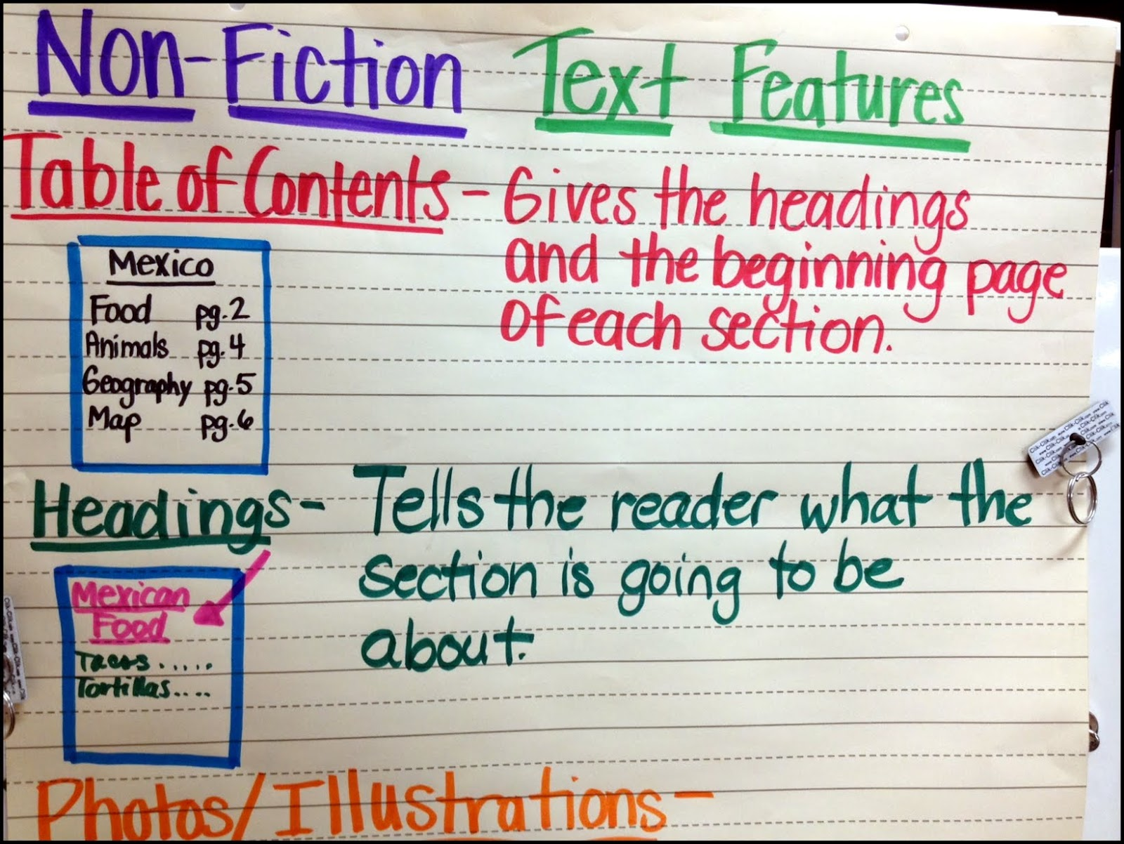 Non Fiction Text Features Study Plus A Few Freebies