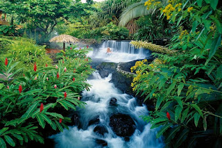 cascadas-y-selva-tropical-en-costa-rica