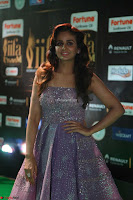Parul Yadav in Stunning Purple Sleeveless Transparent Gown at IIFA Utsavam Awards 2017  Day 2  Exclusive 23.JPG