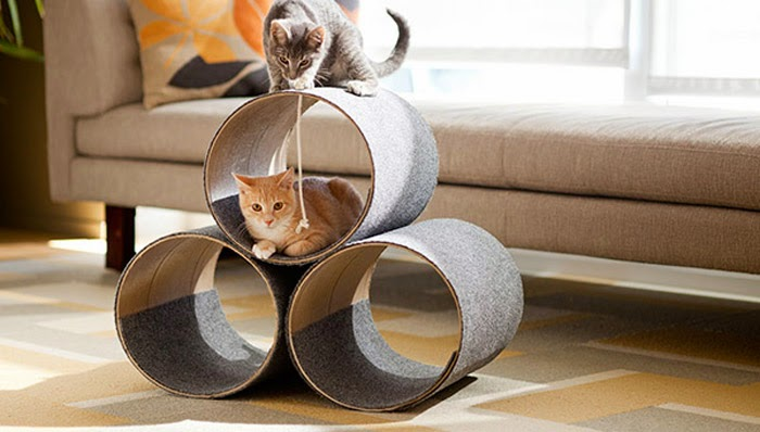 Easy DIY Cat Furniture Project