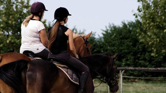 Photo de deux cavalières de dos pendant une leçon d'équitation