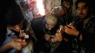 Rokok Kalajengking Sangat Berbahaya Seperti Narkoba Karena.....