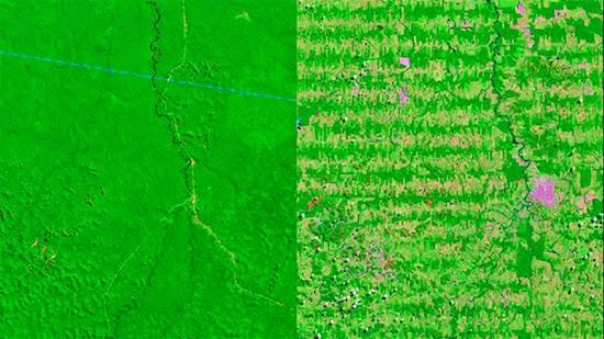 deforestacion1 nasa conjugando adjetivos