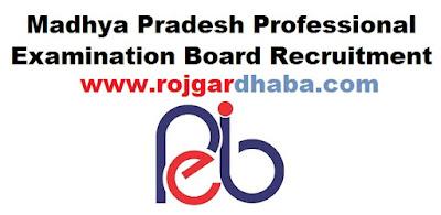 http://www.rojgardhaba.com/2017/04/mppeb-madhya-pradesh-professional-examination-board-jobs.html