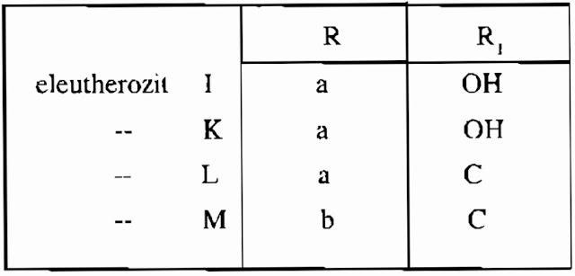 Thành phần Ngũ Gia Bì Gai -  Acanthopanax aculeatus - Nguyên liệu làm thuốc Chữa Bệnh Tiêu Hóa