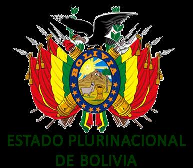 Estructura Del Estado Boliviano Estado Plurinacional De Bolivia