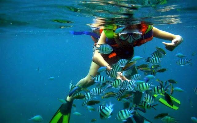 Underwater scenery Publications karimunjawa