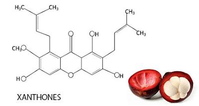 Jurnal Penetapan Kadar Xanton Dari Kulit Buah, Putik, dan Getah Batang Manggis Dengan Metoda Spektrofotometri UV-Vis