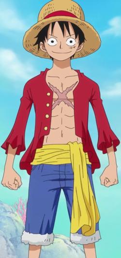 Luffy cicatriz