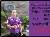 Jual Milagros Serang Call 085319109867