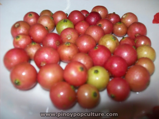 """Pinoy Pop Culture: Very Adorable """"Aratiles"""" Berries"""