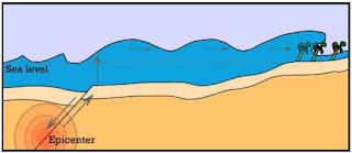 Skema Terjadinya Tsunami dan Gempa bumi