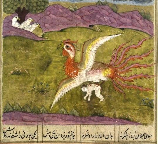 Langue des Oiseaux - Farid Al-Din 'Attar