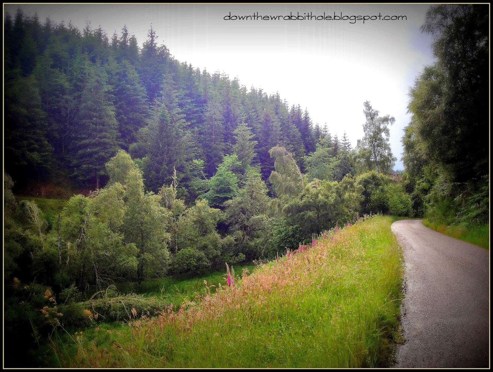 road to Loch Ness, winding road Scotland