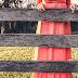 Party in vista? Via libera al red pencil dress!