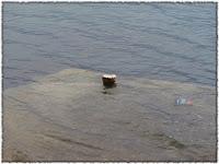 velika plima Postira slike otok Brač Online