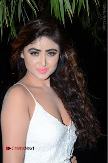Telugu Actress Model Sony Charishta Pos in White Long Dress at Nanna Nenu Na Boyfriends Audio Launch  0002.JPG